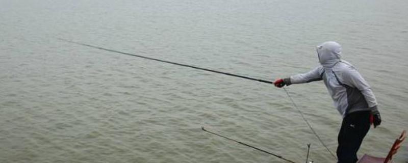 下雨天怎么钓鱼
