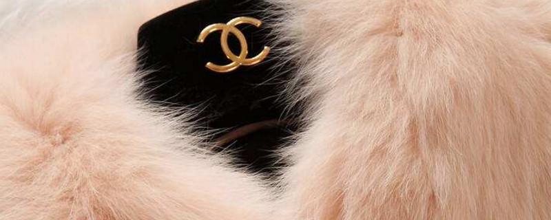 「兔毛」兔毛衣服可以漂白吗