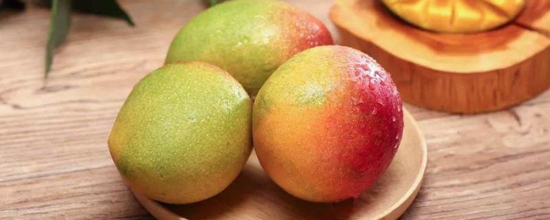 「芒果」芒果可以和桃子一起吃吗?