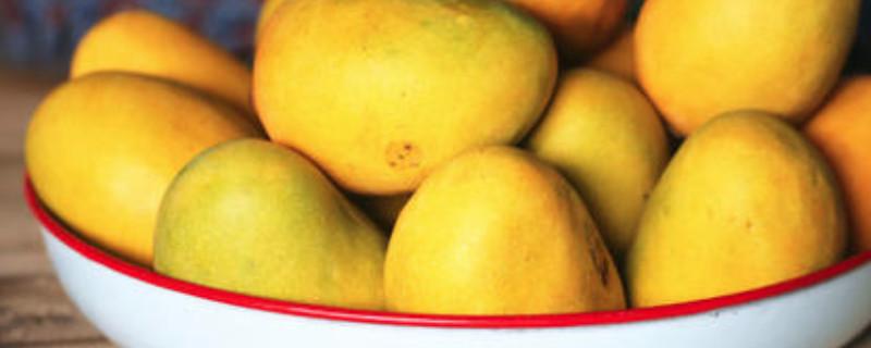 「芒果」芒果可以和西瓜一起吃吗