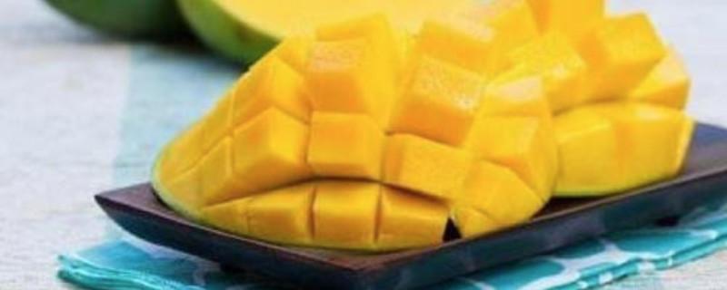 「芒果」芒果可以放冰箱吗?