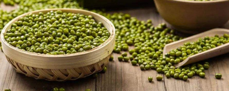 「赤小豆」绿豆和赤小豆能一起煮吗