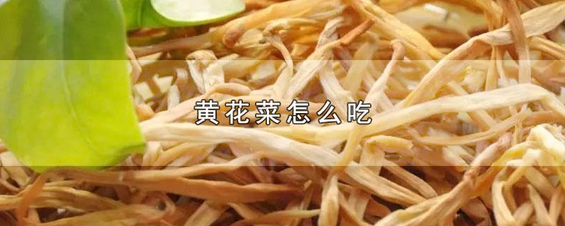 黄花菜如何食用